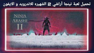 تحميل لعبة نينجا أراشي 2 الشهيره Ninja Arashi 2