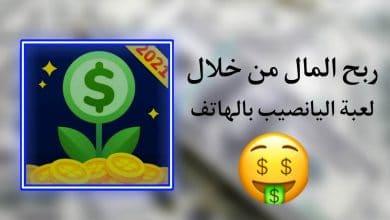 ربح المال من خلال لعبة اليانصيب