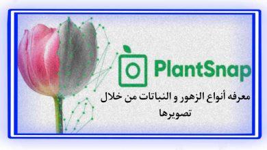 تطبيق التعرف علي نوع النباتات من خلال تصويرها بالهاتف